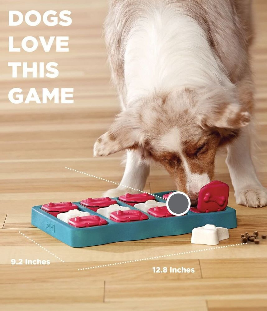 Interactive toys for dogs - Simply Pet-Tastic